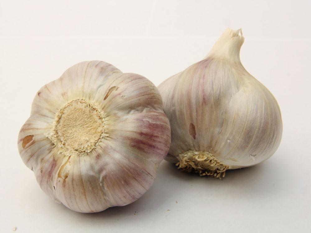 Výsledek obrázku pro česnek bjetin